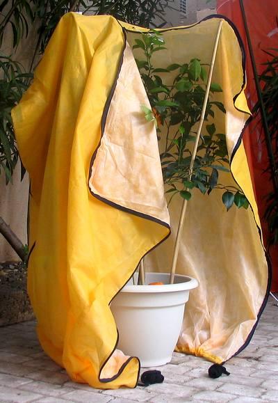 housse pour votre citronnier oranger agrumes un abri pour les prot ger en hiver dans votre. Black Bedroom Furniture Sets. Home Design Ideas
